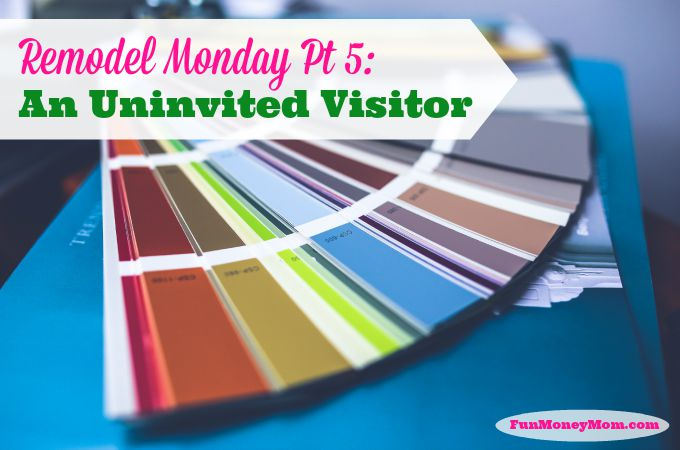 Remodel Monday Pt. 5: An Uninvited Visitor