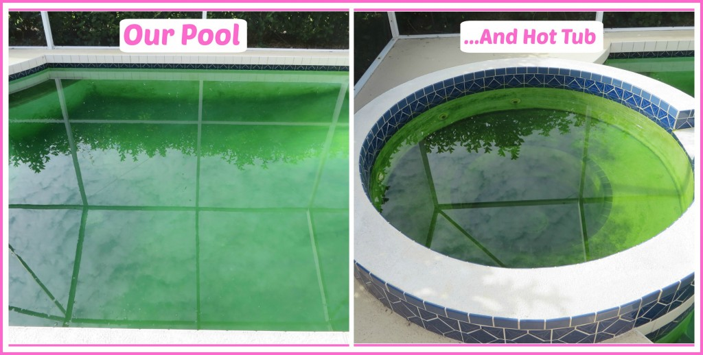 collage pool 2