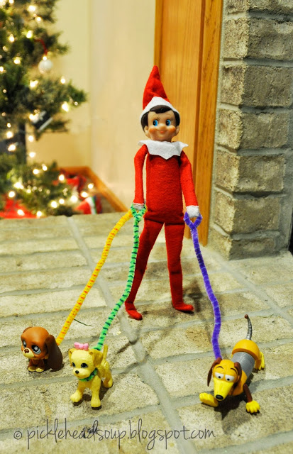 Elf dog walking