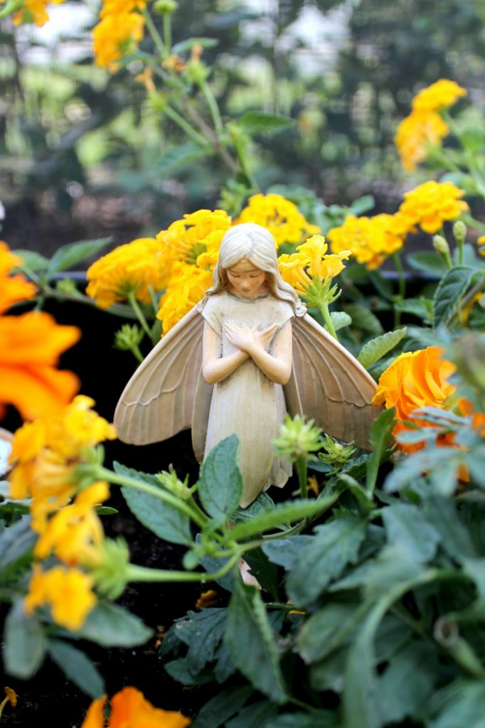 mini-fairy-gardens-fairy-3