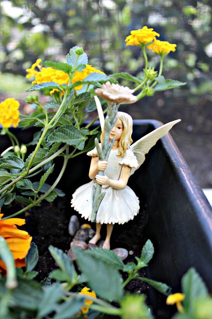 mini-fairy-gardens-fairy-2