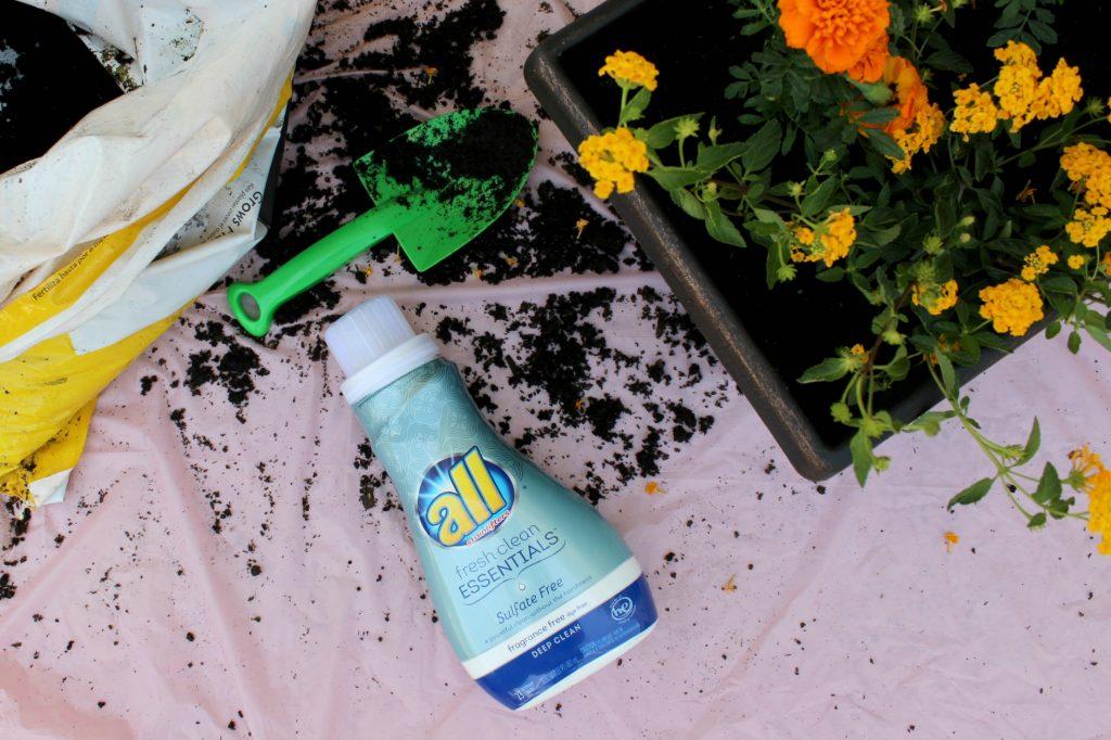 mini-fairy-gardens-all-dirt
