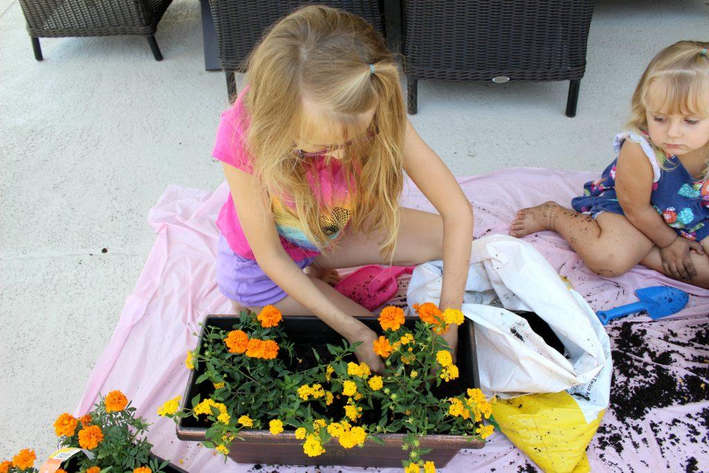 mini-fairy-gardens-planting-1