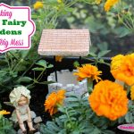 Making Mini Fairy Gardens And A Big Mess