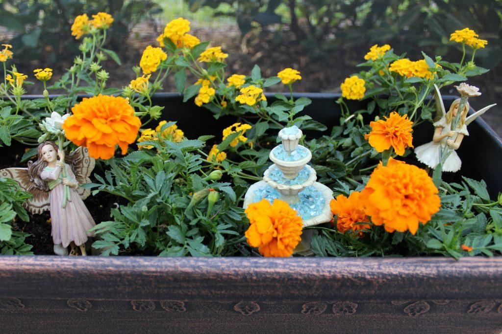 mini-fairy-gardens-planter-2