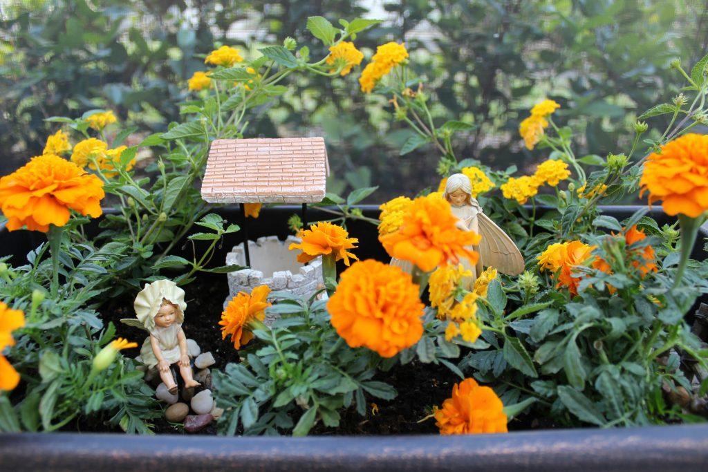 mini-fairy-gardens-planter-1