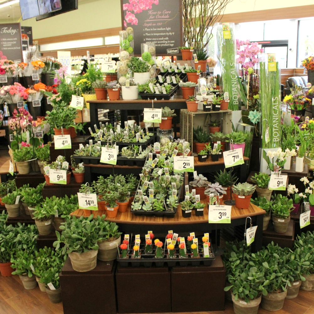 shopping-at-Safeway-flowers