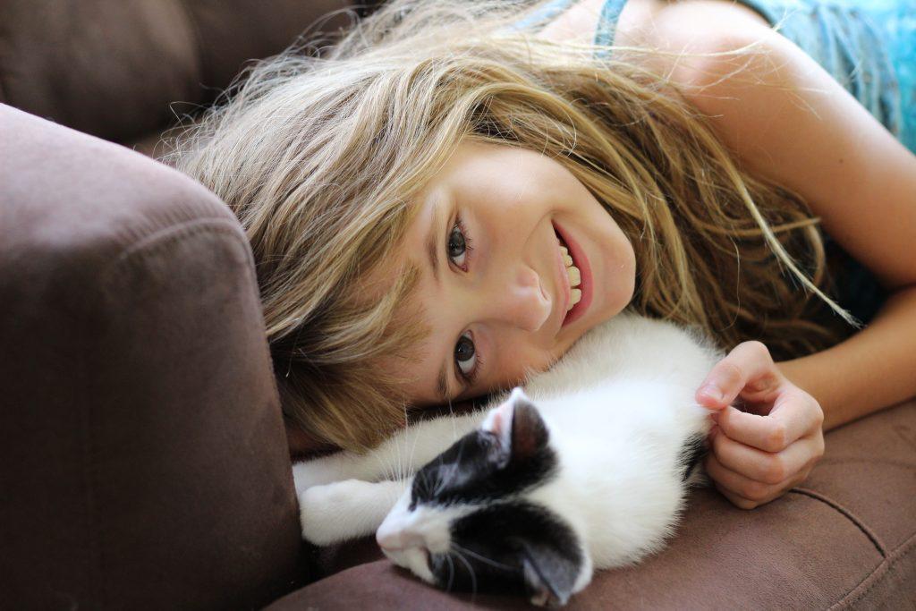 blog-hop-kittens-2