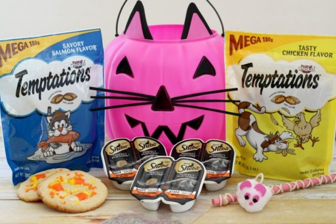DIY-cat-trick-or-treat-bucket-hero