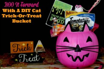 DIY-cat-trick-or-treat-bucket-feature