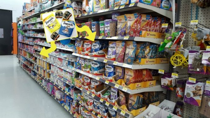 DIY-cat-trick-or-treat-bucket-store