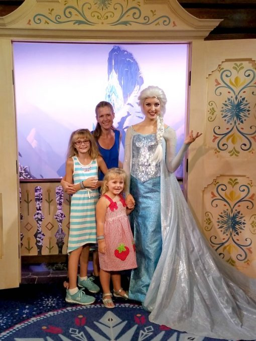 new-disney-world-attractions-Elsa