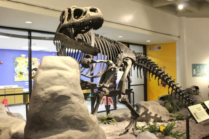Jacksonville-Florida-mosh-dinosaur