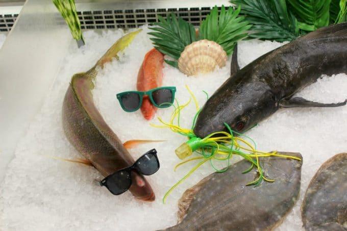 Jacksonville-Florida-safe-harbor-fish-disguise