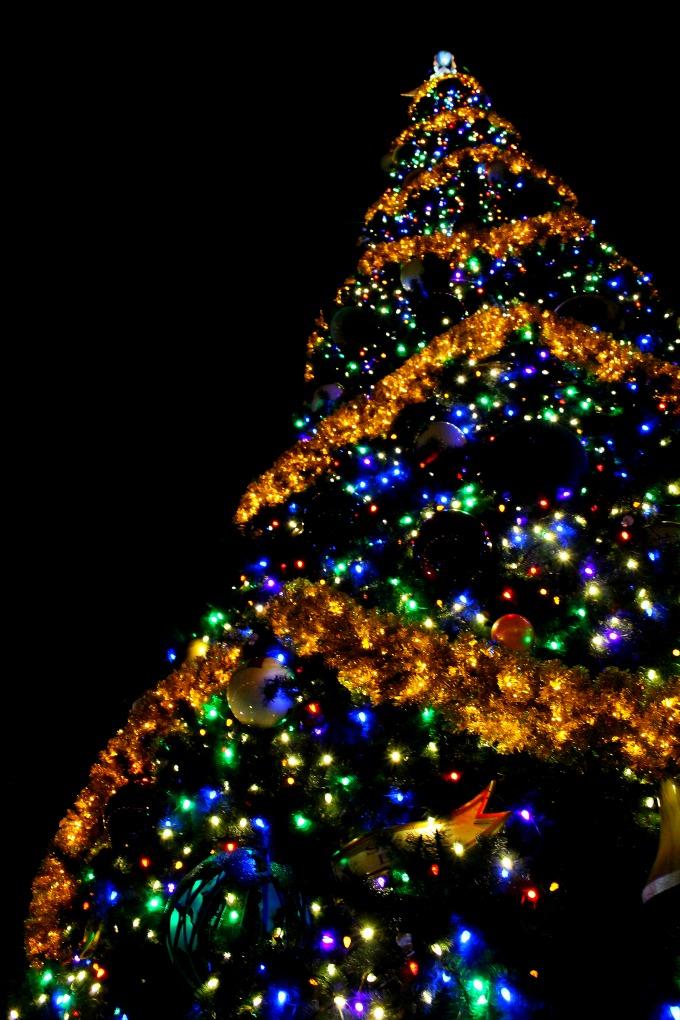 epcots-holidays-around-the-world-tree-2