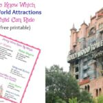How To Know Which Disney World Attractions Your Child Can Ride