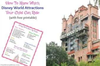 Find out which Disney World attractions your child can ride