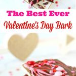 Know someone who deserves a little love? Show them how special they are with this Best Ever Valentine's Day Bark!