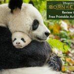 Born In China Movie Review With A Free Printable Activity Book