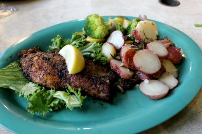 Dining on blackened grouper at Sam's Beach Bar in Pasco County