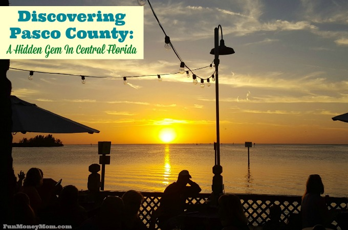 Discovering Pasco County: A Hidden Gem In Central Florida
