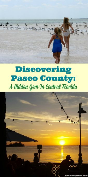 Who knew Pasco County Florida would turn out to be such a hidden gem?! With great restaurants, watersports and other family friendly activities, Pasco County turned out to be a fun vacation destination!