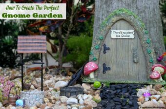 Making a gnome garden with the kids is a great activity