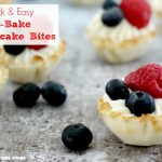 Quick & Easy No-Bake Cheesecake Bites