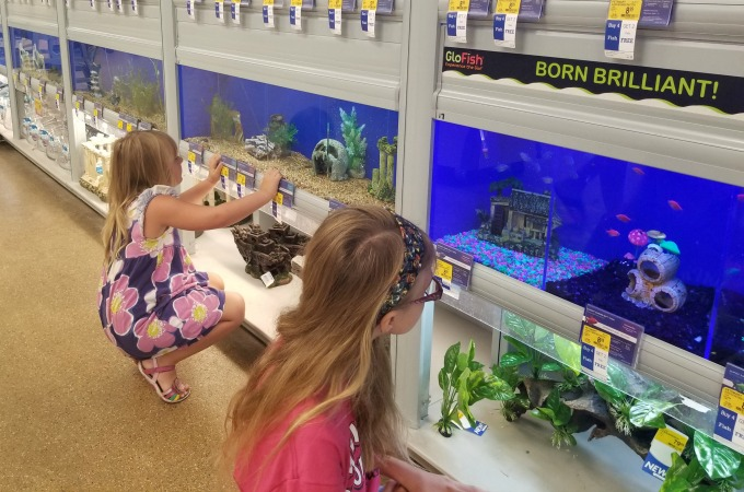 The girls also love the wall of fish.