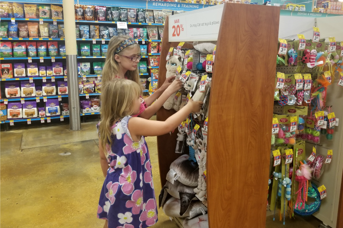 My girls love picking out new cat toys for their pets.