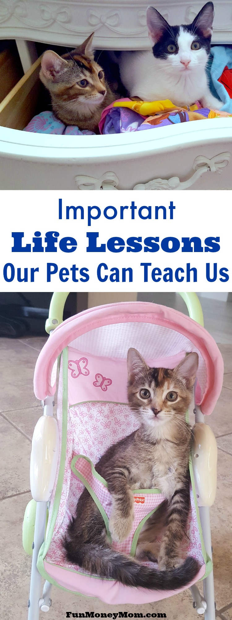 Children love their pets but having a pet means more than just playtime and snuggles. Being a pet owner also teaches children some very valuable life lessons!