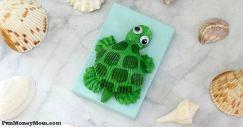 seashell turtle facebook