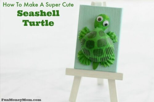 seashell turtle
