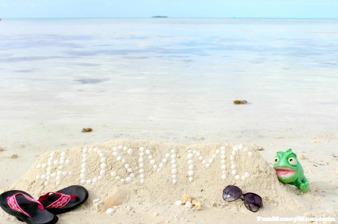 2017 Disney Social Media Moms Celebration Land & Sea: Day 5