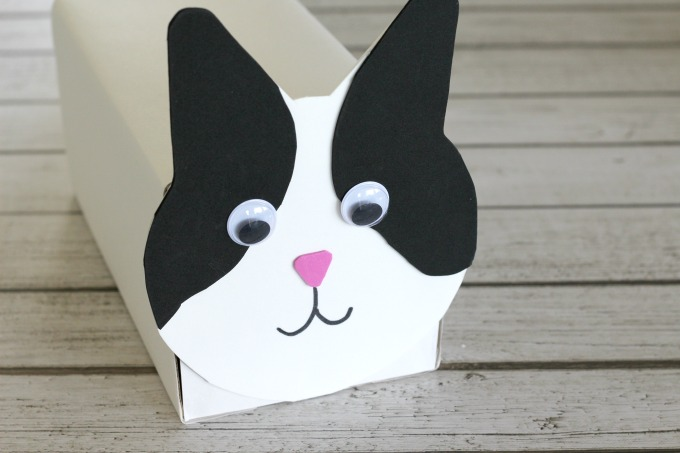 Your cat will need eyes, a nose and a mouth