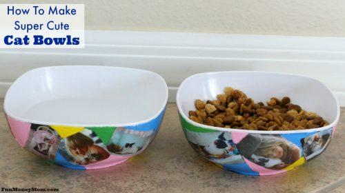 Cat bowls facebook