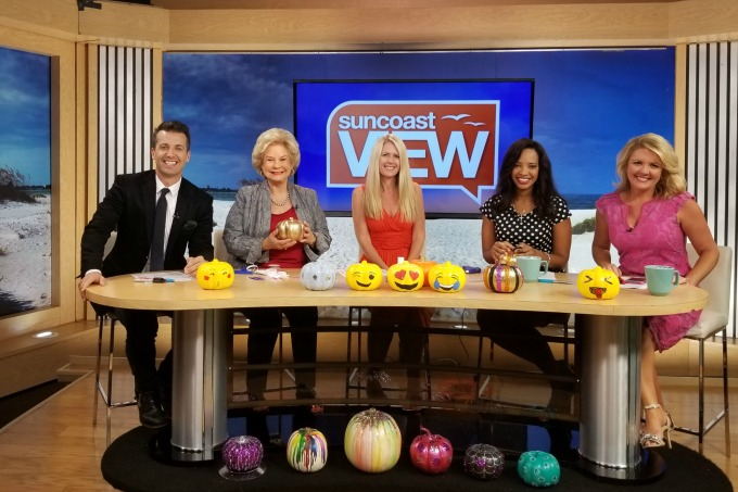 Suncoast View No Carve Pumpkin ideas