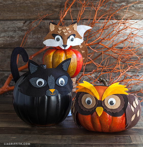 Animal No Carve Pumpkins