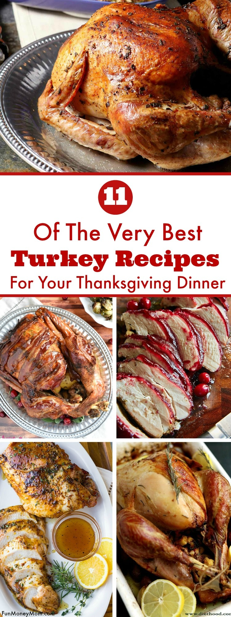 Hosting Thanksgiving at your house this year? Your family will really enjoy the holidays when you serve one of these mouthwatering Thanksgiving turkey recipes.