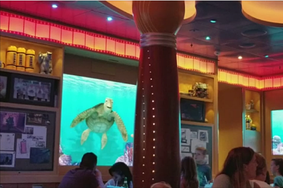 One of the things you can only do on a Disney cruise is chat with Crush the sea turtle