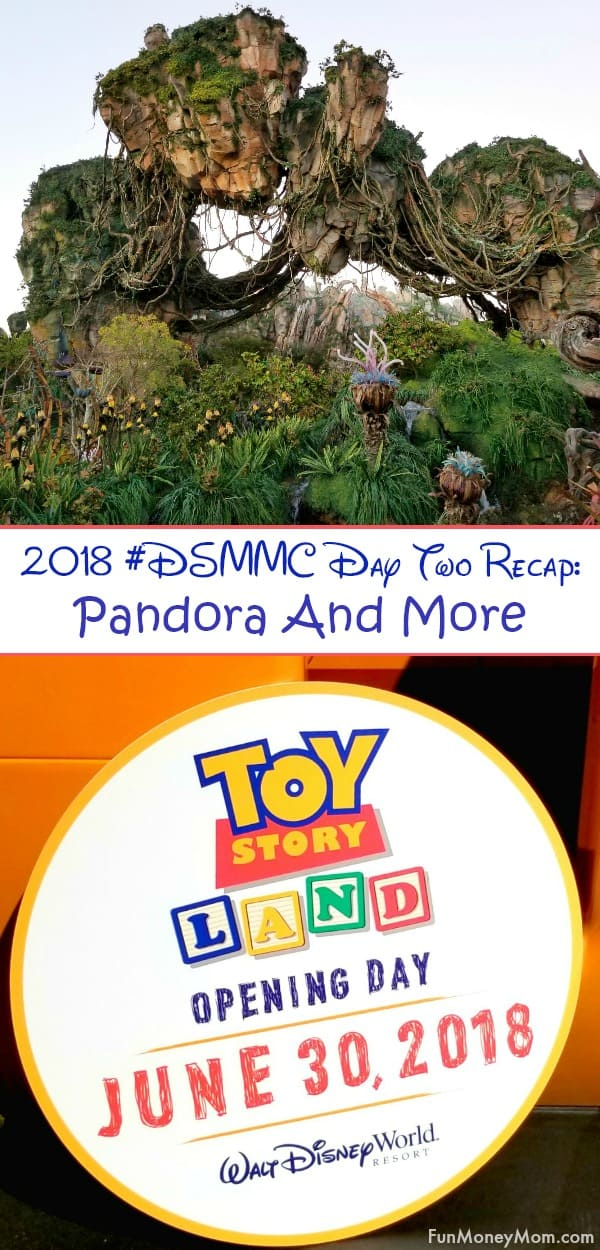 Check out the 2018 #DSMMC Day Two Recap to find out why we were so excited to get up at the crack of dawn and how we lucked into finding one of Disney's most elusive souvenirs.