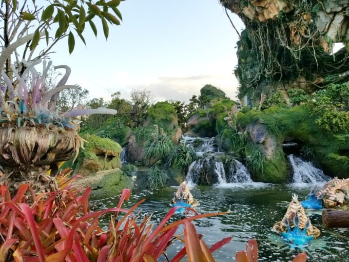 Pond at Pandora in Walt Disney World's Animal Kingdom