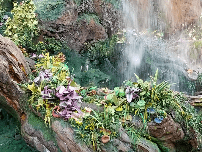 Waterfall at Pandora in Animal Kingdom