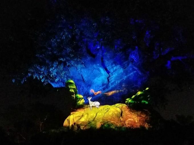 Animal Kingdom's Tree Of Life Awakenings