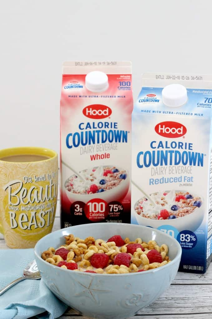 Hood Calorie Countdown is a great substitute for milk