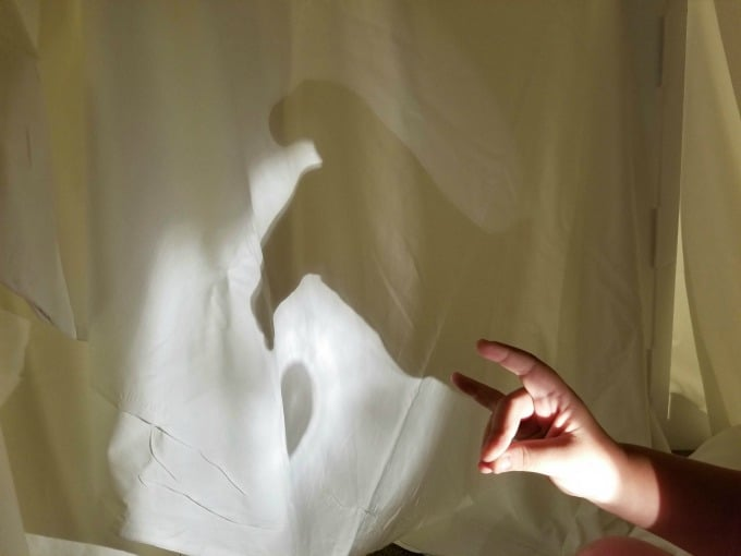 We got really creative with our shadow puppets