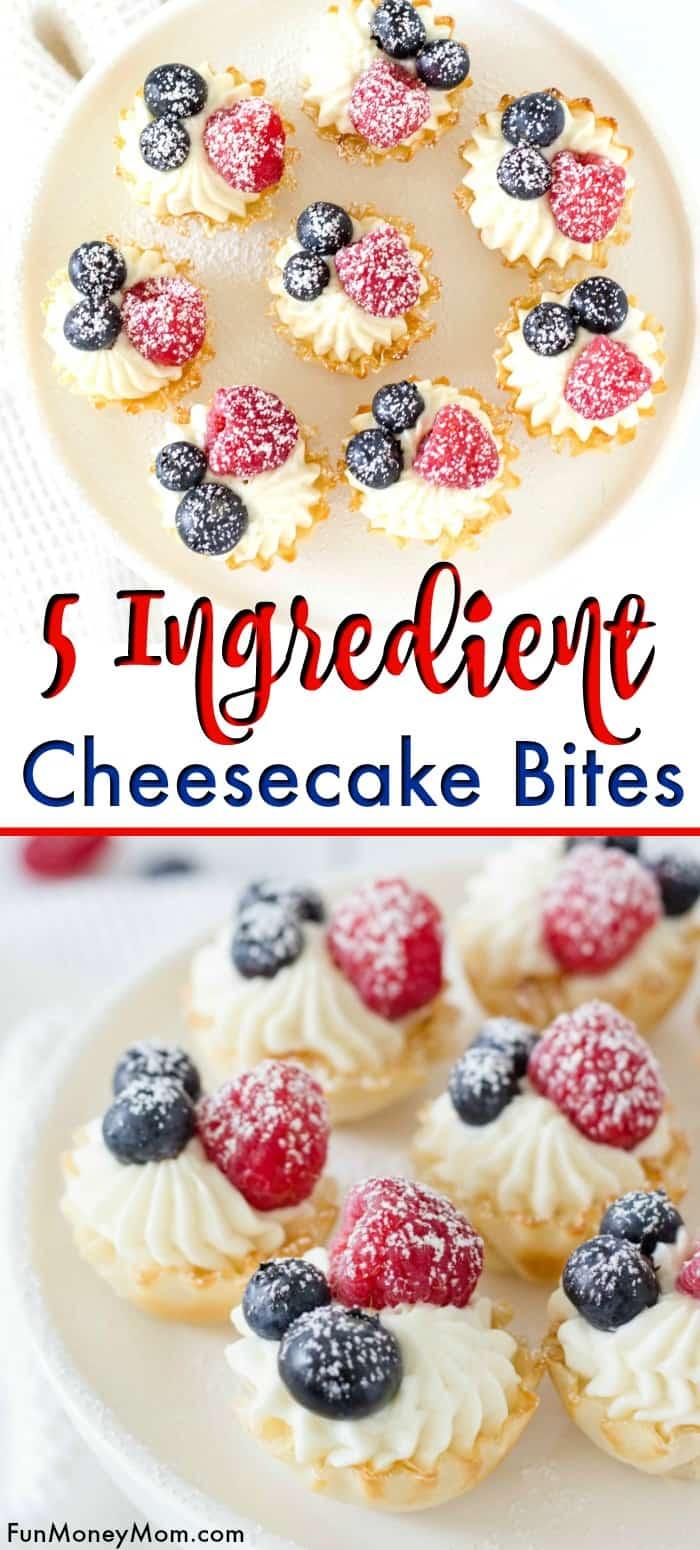 Easy No Bake Cheesecake Bites | Fun Money Mom