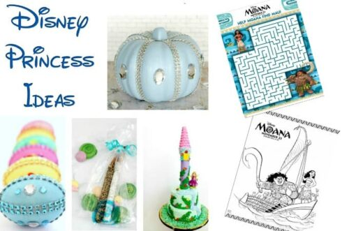 Disney Princess ideas feature