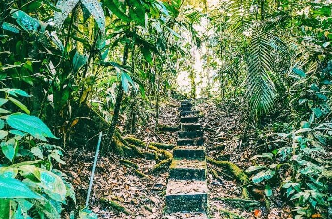 Best things to do in Costa Rica feature