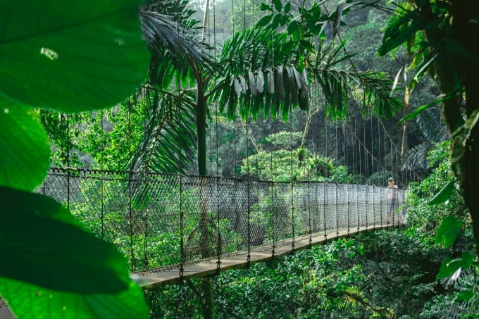 Crossing bridges at Mistico Hanging Bridges in Arenal is one of the best things to do in Costa Rica